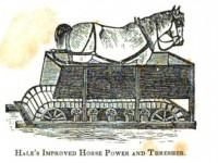 horse-walking-in-threshing-machine