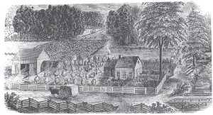 A drawing of a farm with a house and barn, neat fences, a tidy orchard and well-ordered landscape.