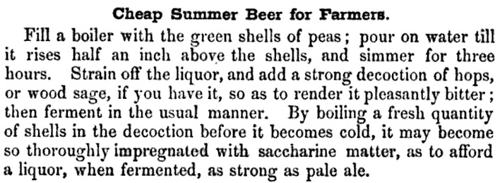 summer-beer-recipe-for-farmers-made-from-boiling-green-pea-shells