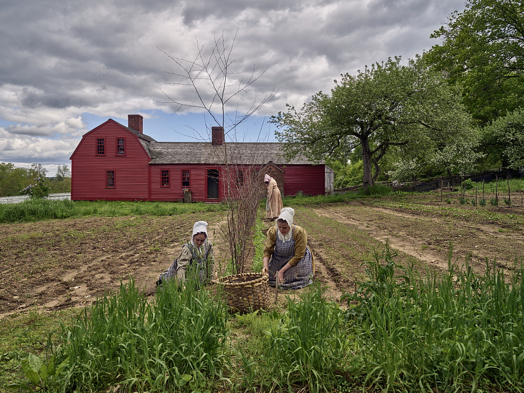 Two women in aprons and bonnets kneeling in a garden weeding while a woman behind them hoes a row.